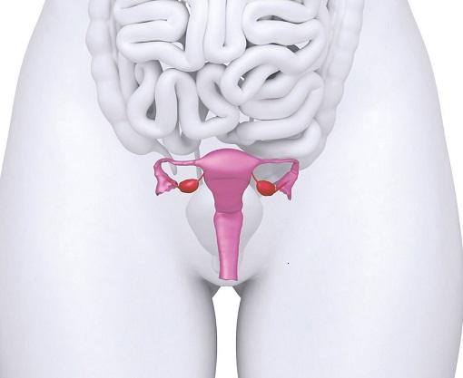 Связь между сексом и затруднением стула у женщин